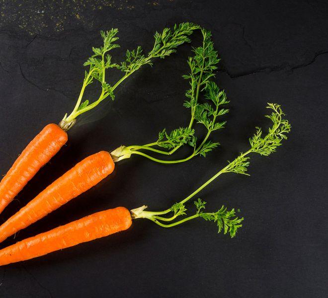 carrots-raw-dog-food