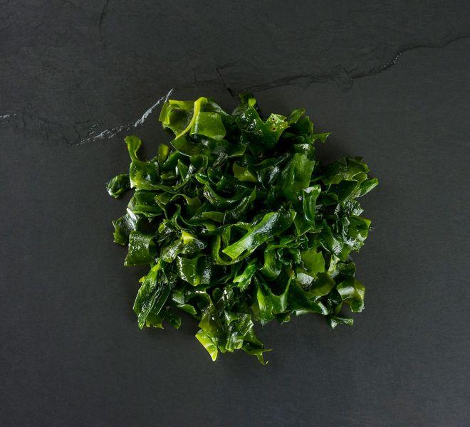 seaweed-raw-dog-food