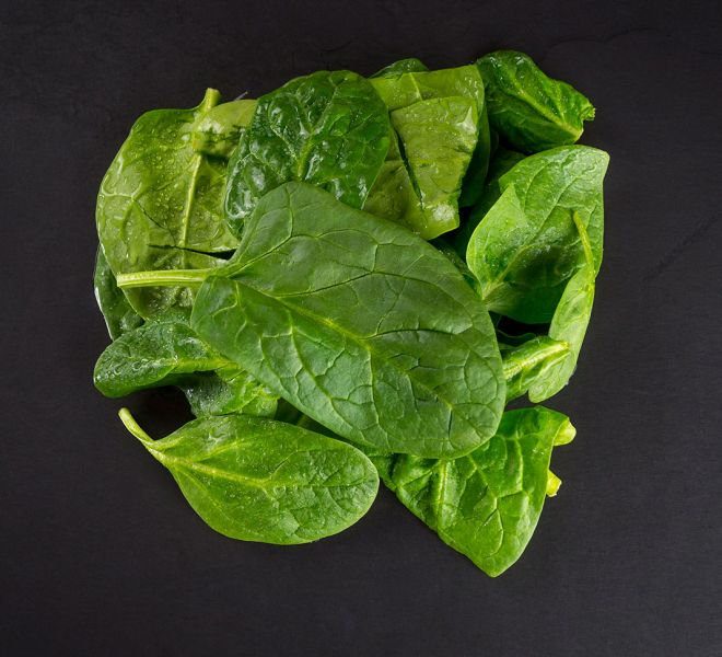 spinach-raw-dog-food